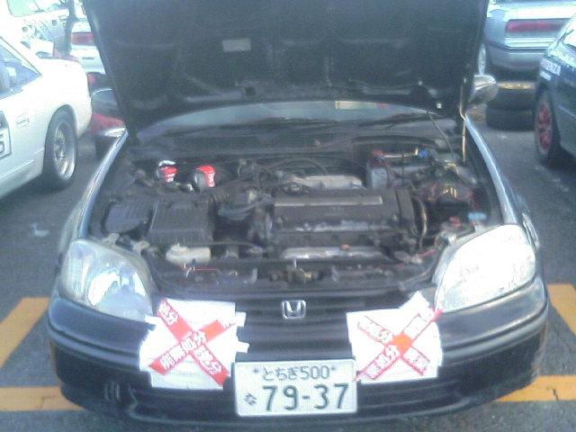 TS331020.JPG